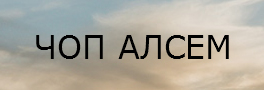 ЧОП АЛСЕМ